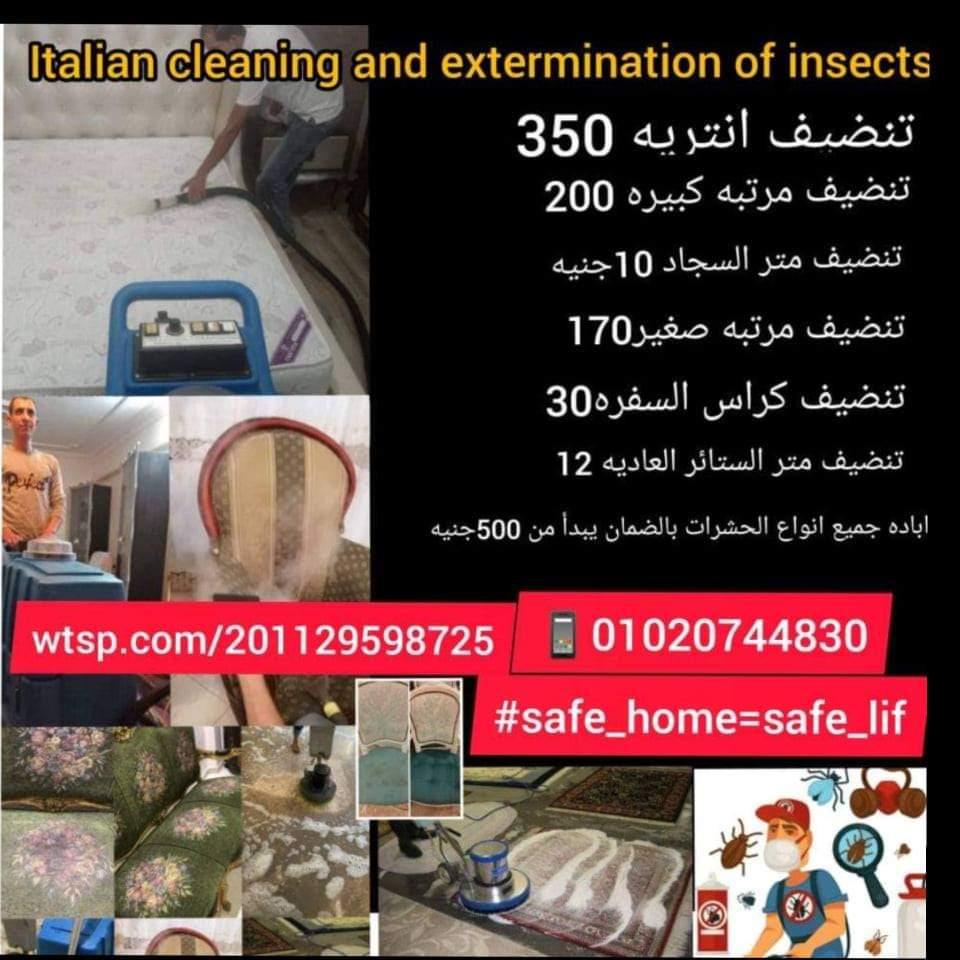 تنظيف واباده الحشرات